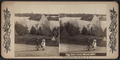 The lake from Breeze Hill, Prospect Park, Brooklyn, N.Y, from Robert N. Dennis collection of stereoscopic views.png