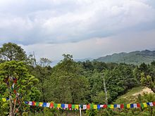 The prayer flag.jpg