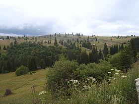 Tihuța Pass - Wikipedia