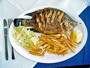 "Matthew 17 - Tilapia zilli (""St. Peter's fish"") - served in a Tiberias restaurant."