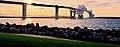 Tokyo Gate Bridge in Tokyo Bay.jpg