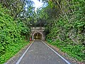 Touge-shimizu-tunnel.jpg