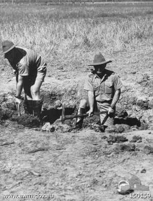Air raids on Australia, 1942–43 - Two Australian soldiers searching for fragments of a bomb dropped during the third raid on Townsville.