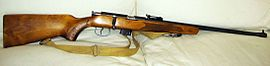 Toz-17-rifle.jpg
