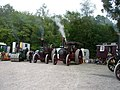 Traction engines at Horsted Keynes - geograph.org.uk - 1446239.jpg