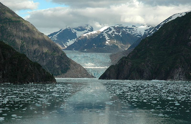 File:Tracy Arm fjord Sawyer Glacier.jpg