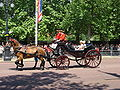 Trooping the Colour 2009 041.jpg