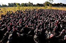 TAFL & GRAN - Page 2 220px-Turkeys_on_pasture_at_an_organic_farm