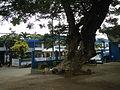 Tuy,Batangasjf9865 02.JPG