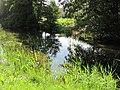 Tylkowo - rzeka Kośna.jpg
