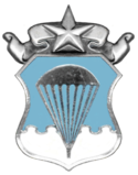 Air Force Master Parachutist Badge