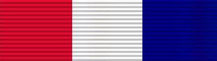 USAID DHA ribbon