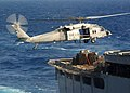 US Navy 040702-N-4374S-007 An MH-60S Knighthawk helicopter assigned to the Dragon Whales of Helicopter Combat Support Squadron Eight HC-8.jpg