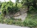 Upper Eocene Buda Marl Formation, 2016 Budapest.jpg