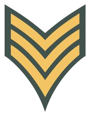 Vermont State Police - Image: VSP Sergeant