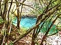 Val de Cusance. Source bleue (2).jpg