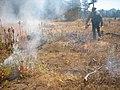 Van Vleck Meadow Prescribe Burn Eldorado NF (4008964235).jpg