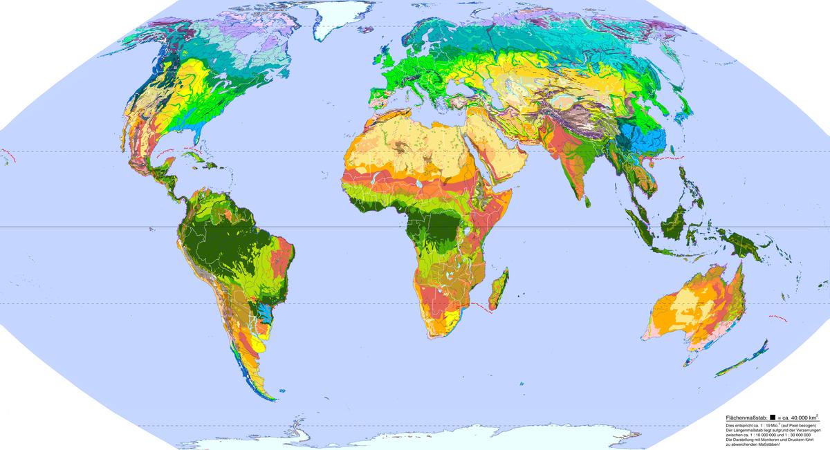 Vegetationszone – Wikipedia