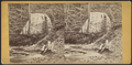 Veiled Fall, Ithaca, N.Y, from Robert N. Dennis collection of stereoscopic views.png
