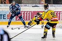 Vienna Capitals vs Fehervar AV19 -130.jpg
