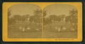 View in Center Harbor, N.H, from Robert N. Dennis collection of stereoscopic views 2.png