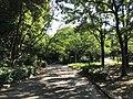View in Suwa Park in Omuta, Fukuoka 3.jpg