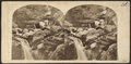 View in the Kauterskill Glen, Catskill Mountains, by London Stereoscopic View Co..png