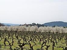 220px-Vignes_et_ceriseraie_%C3%A0_Villar