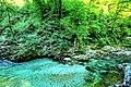 Vintgar Gorge (34971603414).jpg