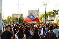 Viva Chile.jpg