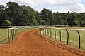Warren Hill, Newmarket - geograph.org.uk - 868721.jpg