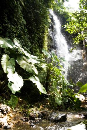 Kepahiang Regency - Cascade of Curug Embun in Kepahiang