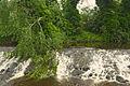 Water of Leith; June 15, 2014 02.jpg