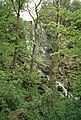 Waterfall in woodland south of Tobermory, Mull - geograph.org.uk - 1434506.jpg