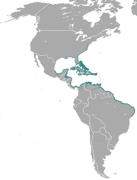 West Indian manatee range