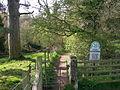 Wetheral Woods - geograph.org.uk - 164103.jpg