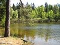 Wiesbuettsee20080511.jpg