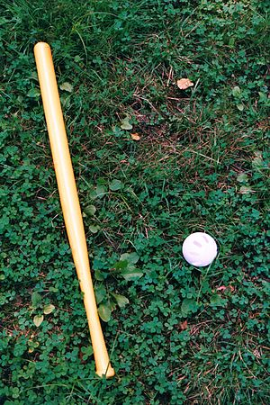 Wiffle ball - A Wiffle bat and ball