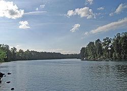 Río Willamette