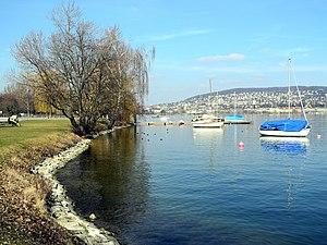 Wollishofen - Landiwiese - Mythenquai 2012-03-12 13-53-02 (P7000).JPG