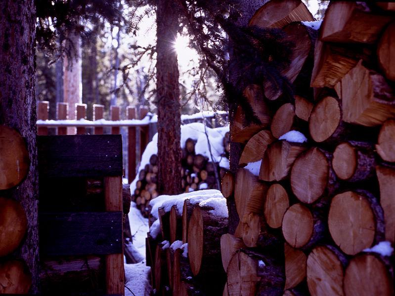 File:Woodpile (6885117855).jpg
