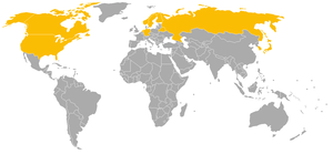 World Sprint Speed Skating Championships for Men - Countries that have won the World Sprint Speed Skating Championships.