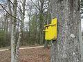 Yellow Bird House - 16907322516.jpg