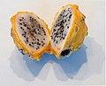 Yellow dragon fruit (50815s).jpg