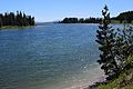 Yellowstone River 08.JPG
