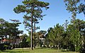 Yersin University of Da Lat 12.jpg