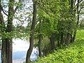 Zarasai, Lithuania - panoramio (468).jpg
