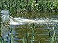 Zoetermeer uitstroom gemaal (detail).JPG