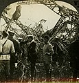 """""""French Troops Inspecting a Wrecked Zeppelin."""" (cropped).jpg"""
