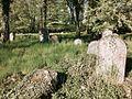 Židovský hřbitov Terešov.jpg